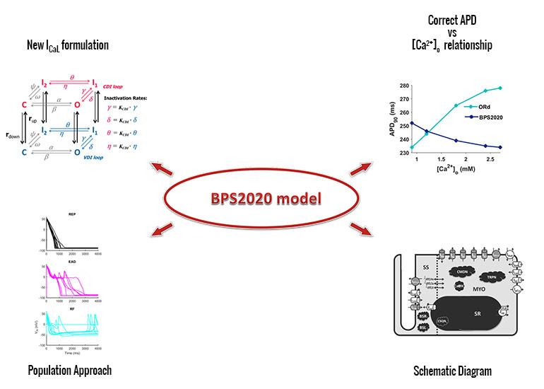 BPS2020 2 topic